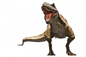 Tyrannosaurus Rex dinosaur commonly abbreviated to T.rex.